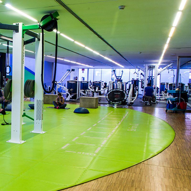 Circuito Gimnasio : Gimnasio o centro wellness manuel becerra